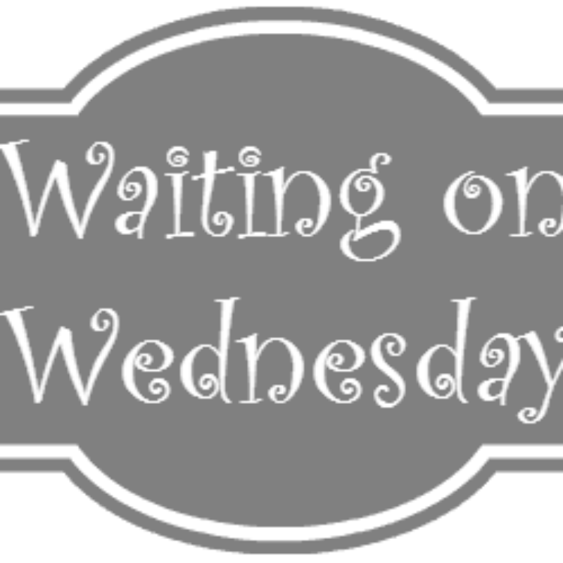 Waiting on Wednesday: The Start of Me and You