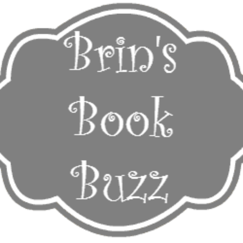 Brin's Book Buzz: February 2015 Releases
