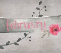 Monthly Wrap-Up: February 2015