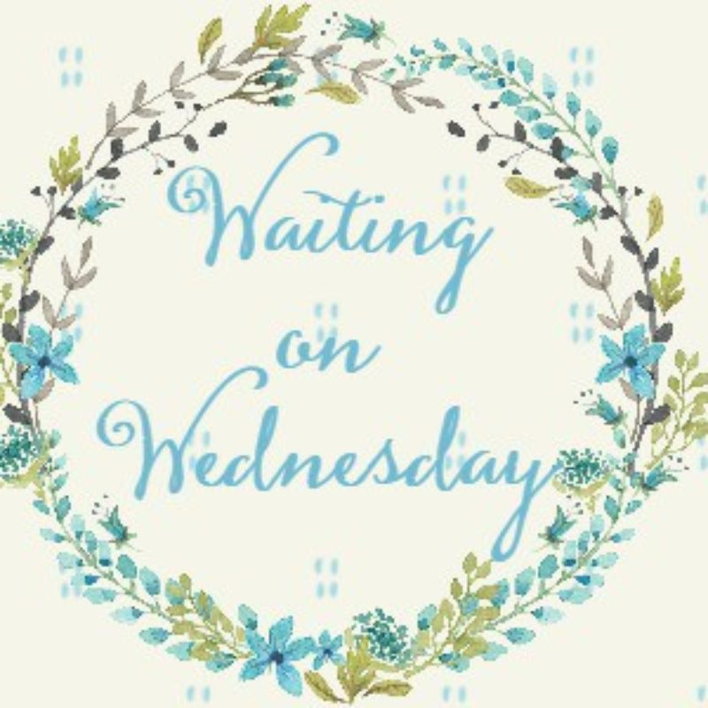 Waiting on Wednesday: The Wrath & The Dawn