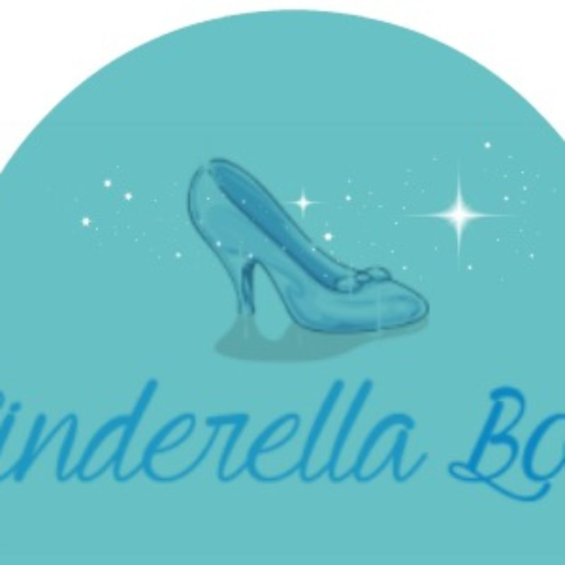The Cinderella Book Tag