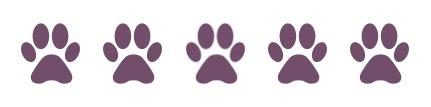 paws-5