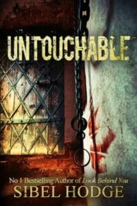untouchable sibel hodge cover art bookshelves