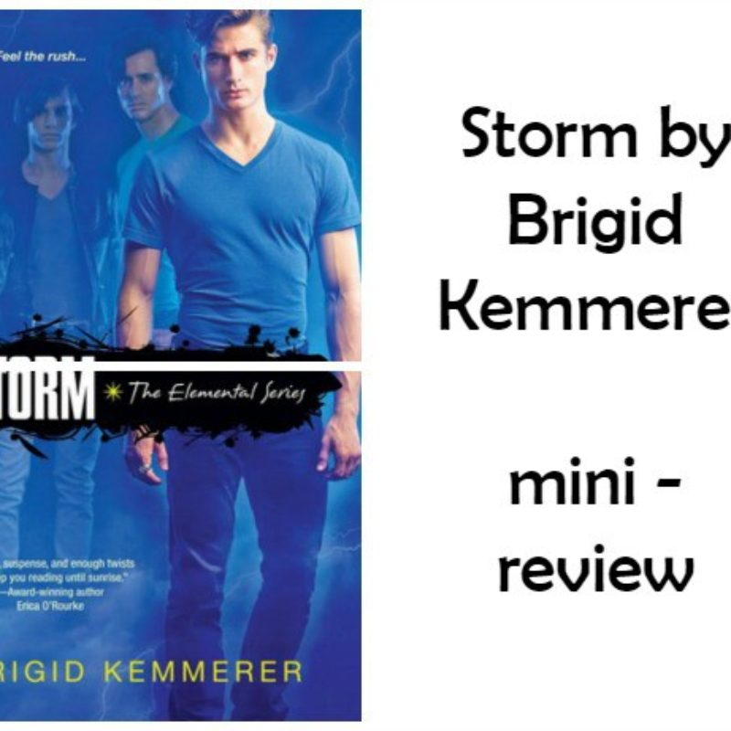 Storm by Brigid Kemmerer – mini review