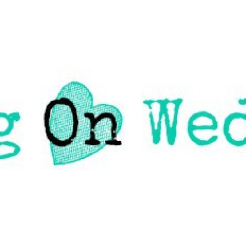 Waiting on Wednesday: The Summer of Chasing Mermaids