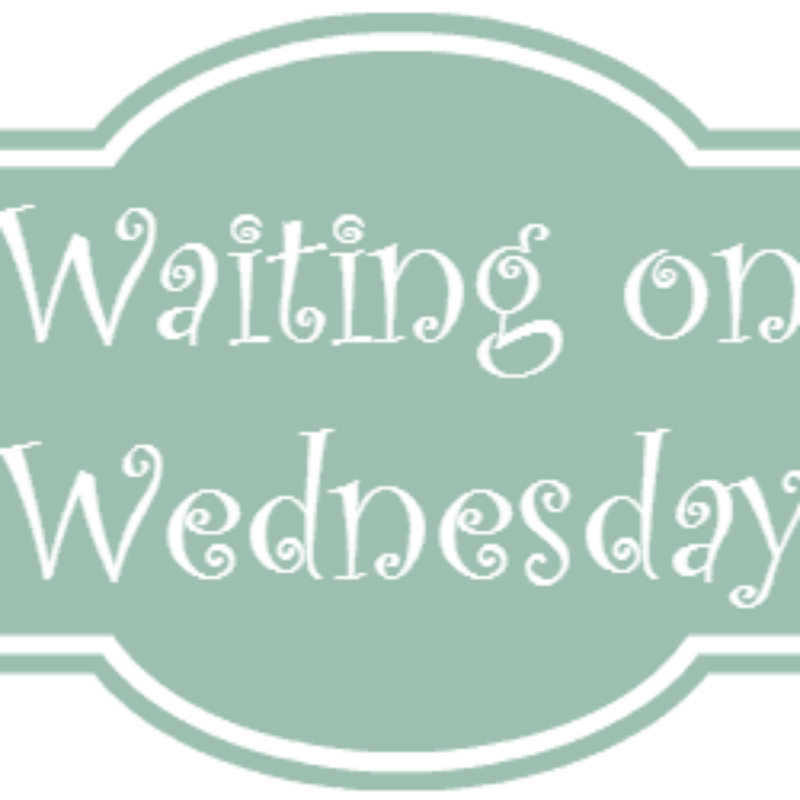 Waiting on Wednesday: The Raven King