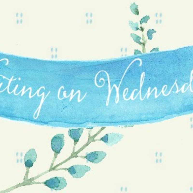 Waiting on Wednesday: Frozen Tides