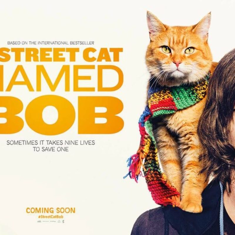 A Street Cat Named Bob: Film Review