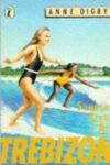 summer term at trebizon anne digby cover art book haul