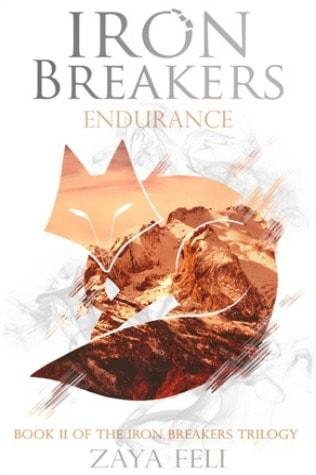 endurance cover art january book haul